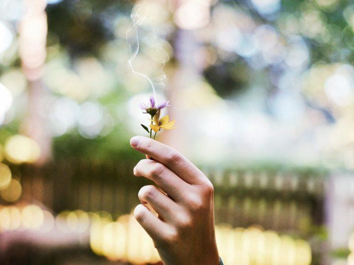 Wie wird man Mundgeruch als Raucher los?